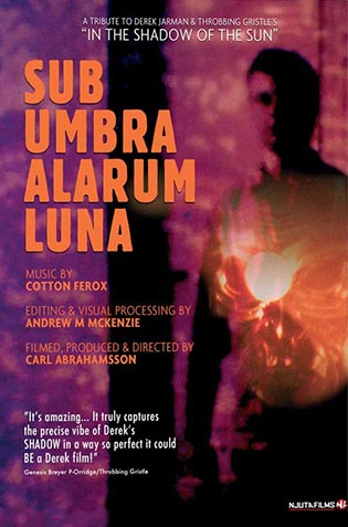 SUB UMBRA ALARUM LUNA
